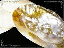 【目玉商品】天然貝パールシェル/天然石パワーストーン浄化用/P19Jul15