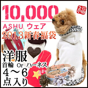 2013 ASHU spring clothing & neck wheeled bag ¥ 10,000 / dog collar dog clothes / pet 5P13oct13_b