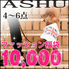 2014 ASHU spring clothing & neck wheeled bag ¥ 10,000 / dog collar dog clothes / pet 5P13oct13_b