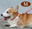 犬 首輪 ASHU ステップカラー M 中型犬 革が苦手な方におすすめ 簡単ワンタッチ ナイロン 布製日本製 ブランド