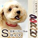 犬 首輪 ASHU ワンラインカラー S 小型犬 おしゃれで丈夫 ナイロン ビニール 人気