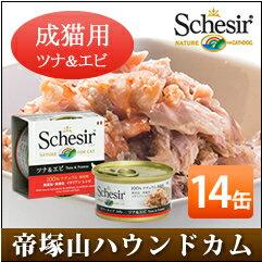Sissa 貓金槍魚 & 蝦 85 g 14 罐設置貓罐頭濕的糧無添加劑的高品質 Schesir (Sissa) 果凍及烹飪水類型