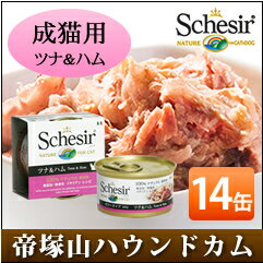 Sissa 貓金槍魚 & 火腿 85 g 14 罐設置貓罐頭濕的糧無添加劑的高品質 Schesir (Sissa) 果凍及烹飪水類型