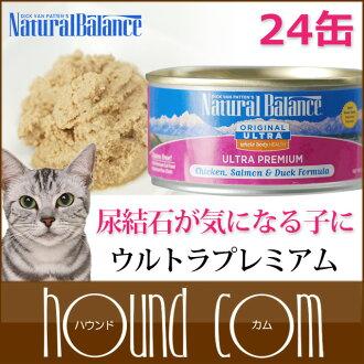 自然平衡超豪華孔身體健康貓罐頭 170 克 24 罐設置貓食品添加劑無濕的食品
