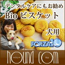 Bn_sm_for_bio04