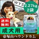 犬 ドッグフード 毎日の健康維持に最適な栄養バランス ワイソン 小粒ドッグフード アダルト2.27k