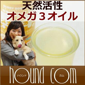 以鱈魚肝油,依靠吃和食品天然活性歐米茄-3 油淋上鮭魚油 DHA EPA 和狗自製食物或狗食物的狗貓寵物訂婚 / 推薦/魚油 5P13oct13_b