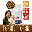 高品質な原材料、シンプルな配合で低脂肪・低カロリーフード! ドッグフード NATURAL Harvestナチュラルハーベスト ドッグフード でダイエット メンテナンススモール ベーシックフォーミュラ 4袋 ナチュラルハーベストまとめ買いおまけ付き対象 厳選のプレミアムフードなら【ドックフード ペット用品 ナチュラル ハーベスト 犬の餌 ワンコ 帝塚山ハウンドカム】