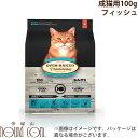 【100g】成猫用 オーブンベイクド アダルトフィッシュ お試しサイズ 無添加 プレミアムフード キャットフード ドライフード オーブンベークド