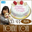 犬 誕生日ケーキ フットマークケーキ 5号 馬肉 ペット用ケーキ 手作り 低カロリーでダイエット 涙やけにも安全 バースデーケーキ 無添加おやつ【a0179】