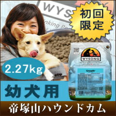 Ship 10/28-dog trial first limited within WYSONG growth 2.27 kg / puppy / young dog / for baby non-additive dog