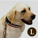 犬 首輪 大型犬 ASHU トリコロールカラーL ゴールデン シェパード ブルドッグ アレルギーも安心幅広3cmペット用品 いぬ イヌ グッズ 誕生日 犬首輪 ラブラドール 犬用首輪 かわいい 犬の首輪 レッド 赤 ブラウン おしゃれ 散歩 シンプル 帝塚山ハウンドカム 犬用品
