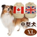 ワールドASHU  XL  中型犬 シャツ ウェア 犬の服 オーガニックコットン