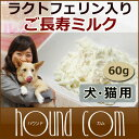 犬用サプリメント ご長寿ミルク60gラクトフェリン初乳老犬
