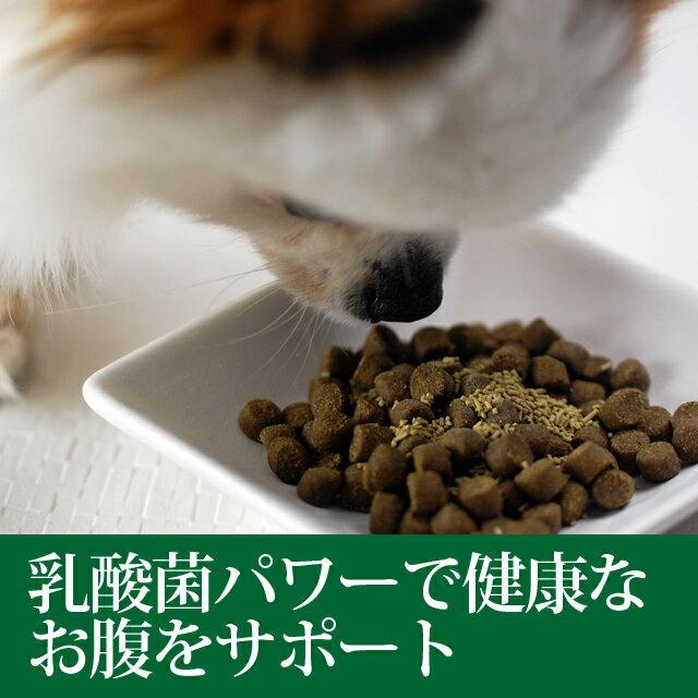 犬用乳酸菌 イーストスリム 2個セット プレゼ...の紹介画像2