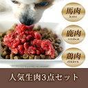 犬用 生肉人気3点セット [簡単手作り食]【ドッグフード ド...