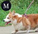【aSHU トラッド】リードMサイズ【中型犬、大型犬兼用】【...