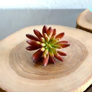 フェイク 多肉植物 バーガンディ アジアン ハワイアン ナチュラル フラワー