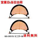 PROMARK プロマーク ミニゴールセット 2個入り SG...