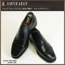 【送料無料】  Scotch Grain【ビジネスシューズ】スコッチグレイン【Scotch Grain】ストレートチップ8426【紳士靴】【レザー】【メンズ】【革靴】【革】【ランキング】【人気】【ブランド】