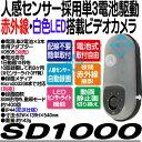 SD1000【屋外設置対応単3電池×3本動作SDカード録画ビデオカメラ】 【赤外線LED】 【センサーライト】 【REVEX】 【リーベックス】