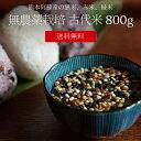 [送料無料][無農薬栽培][800g] 古代米 800g / 黒米、緑米、赤米 / 無農薬栽培 / 九州