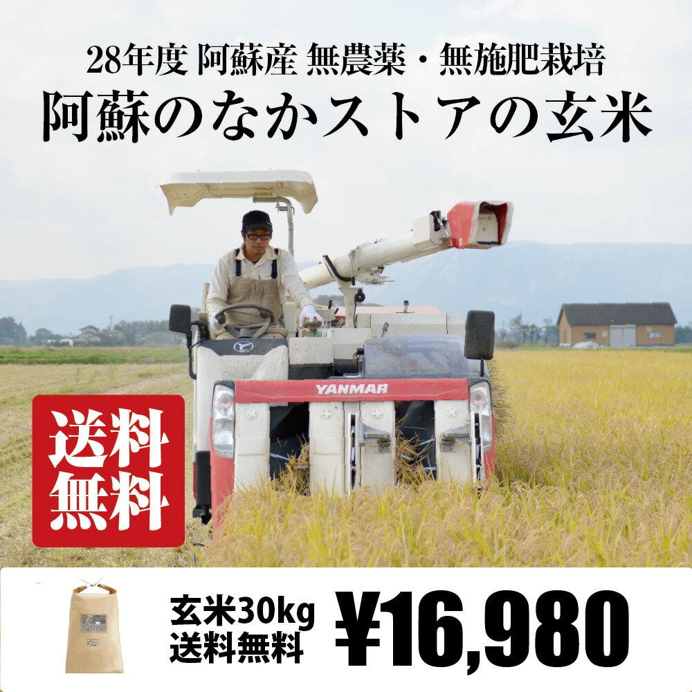 [送料無料][無農薬・無施肥栽培] 阿蘇のなかストアの玄米 30kg / 自然栽培 / 九州 熊本 阿蘇産 / コシヒカリ ササニシキ 森のくまさん / 28年度産