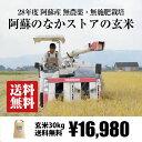 [送料無料][無農薬・無施肥栽培] 阿蘇のなかストアの玄米 30kg / 自然栽培 / 九州 熊本
