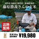 [送料無料][無農薬・無施肥栽培] 藤原勝義さんの玄米 30kg / 自然栽培 / 九州 熊本 阿蘇産 / ヒノヒカリ / 28年度産