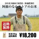 [送料無料][自然栽培米] 阿蘇のなかストアの玄米 30kg / 無農薬・無施肥栽培 / 九州 熊本