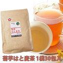 菊芋茶 はとむぎ 菊芋はと麦茶 30包入り1袋 国産 キクイモ