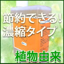 オレンジ・ウォッシュ 食器洗い キッチン