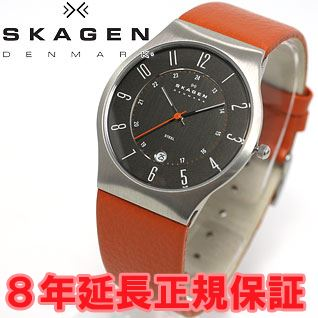 Scar gene SKAGEN watch men steel STEEL leather 233XXLSLO