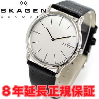 Skagen in SKAGEN watches mens steel STEEL leather 858 XLSLC