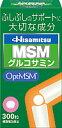 久光製薬 HisamitsuMSM 300粒/送料無料/02P03Dec16
