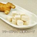 【数量限定】フリーズドライ 生姜キューブ 香料・着色料無添加 すりおろし生姜 薬