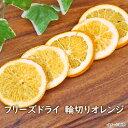 【数量限定】フリーズドライ輪切りオレンジ(13g)アスザックフーズ