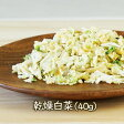 乾燥野菜乾燥白菜(ドライ白菜) (40g) 乾燥食品のアスザックフーズ