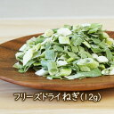 フリーズドライ野菜 フリーズドライねぎ (12g) 乾燥ネギ 乾燥野菜のアスザックフーズ●賞味期限: