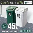 ゴミ箱 ダストボックス【あす楽】【送料無料】【アスベル ASVEL】分別 ダストボックスSPハンドルペール 45L【2個セット】05P29Jul16