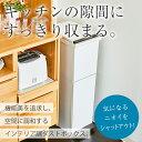 ゴミ箱 ごみ箱 ダストボックス【送料無料】【あす楽】分別 ダストボックスペダル 2段 スリム 38L