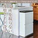 ゴミ箱 ごみ箱 ダストボックスSP 分別 ダストボックスペダル 2段 ワイド 40L