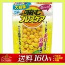 【メール便送料160円】噛むブレスケア パウチ レモンミント 100粒