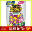 【ネコポス送料160円】噛むブレスケア アソート 100粒(レモン・ベリー・グレープ)