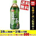 【送料無料】サンガリアあなたの濃いお茶500mlペットボトル 24本入※北海道800円・東北400円の別途送料加算