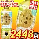 【期間限定特価】【送料無料】ポッカサッポロ熊本おいしい玄米茶525mlペットボトル 24本入※北海道800円・東北400円の別途送料加算