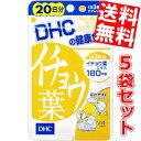 【送料無料5袋セット】DHC 100日分イチョウ葉エキス(20日分×5袋)[DHC サプリメント]※北海道・沖縄・離島は送料無料対象外