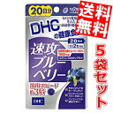 DHC 100日分速攻ブルーベリー(20日分×5袋)※北海道800円・東北400円の別途送料加算