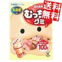 【送料無料】味覚糖100gむっちりグミ 乳酸菌ドリンク6入※北海道800円・東北400円の別