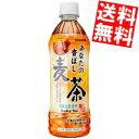 【送料無料】サンガリアあなたの香ばし麦茶500mlペットボトル 24本入※北海道800円・東北400円の別途送料加算